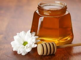 Šviežias grikių medus !