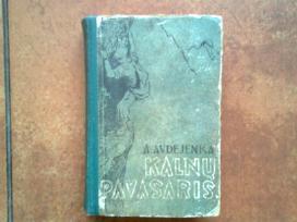"""A. Avdejenka """"Kalnu pavasaris"""" 1958 metai"""