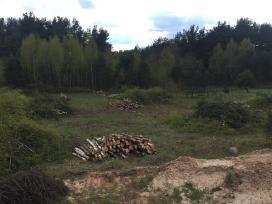 Sklypų valymas,šakų išvežimas, medžių pjovimas