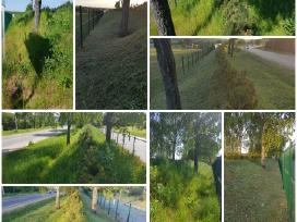 Vejos, žolės, krūmų pjovimas, aplinkos tvarkymas