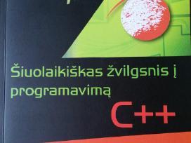 Šiuolaikiškas žvilgsnis į programavimą