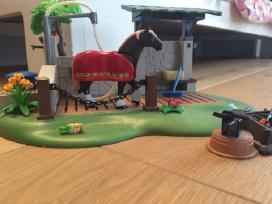Žirgų prausykla