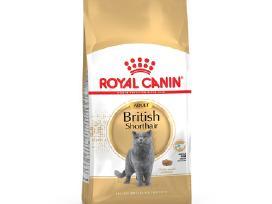 Royal Canin British Shorthair Adult 10 kg