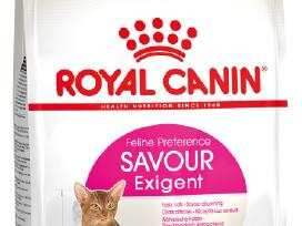 Royal Canin Exigent Savour Sensation 35/30 10kg