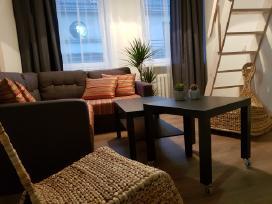 Nemuno apartamentai Senamiestyje