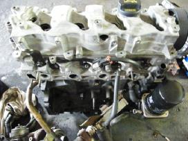 Hyundai variklis