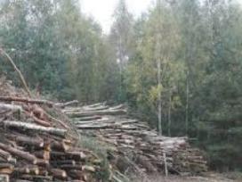 Biokuras. Krūmų ir miško kirtimas. Apleistų sklypų - nuotraukos Nr. 3