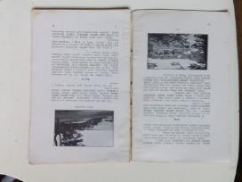 Tarpukario knygos - nuotraukos Nr. 4