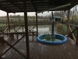 Klaipėda Pirtelė Rimkuose(garinė+rusiška+sauna)spa - nuotraukos Nr. 11