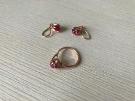 Auksiniai Auskarai su Žiedu, Praba 583