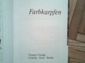"""Bernhard Teichfischer """"farb-karpfen"""" 1988"""