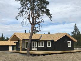 Rąstiniai, karkasiniai namai, terasos, mediena - nuotraukos Nr. 2