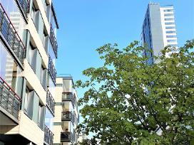 Jaukūs apartamentai Ramei prie Kuršių nerijos - nuotraukos Nr. 18