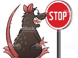 Graužikų naikinimas, deratizacija, pelių nuodai