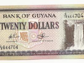 Gvianos banknotai