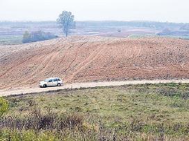 Ūkininkas ieško išsinuomoti žemę - nuotraukos Nr. 2