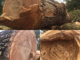 Unikalus ir labai reti medžio ruošiniai!