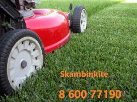 Vejos, žolės ir krūmų pjovimas, priežiūra