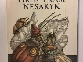 """Knyga """"Tik niekam nesakyk"""", V. Žilinskaitė"""