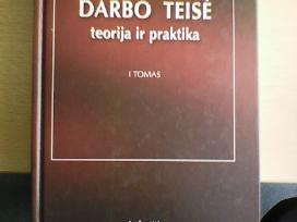 Darbo teisė: terorija ir praktika, V.tiažkijus