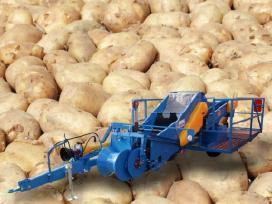 Bulvių,svogūnų,morkų sandeliavimo techniką ir kt. - nuotraukos Nr. 14