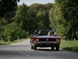 Mustang kabrioletas 1966