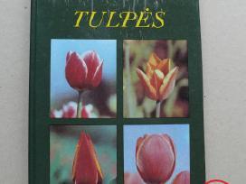 Knygos gėlių augintojams
