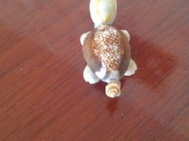 Vėžliukas iš kriauklyčių - nuotraukos Nr. 2