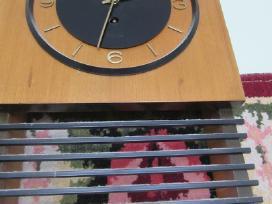 Sieninis laikrodis - nuotraukos Nr. 2