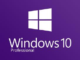 Ms Windows 10 professional