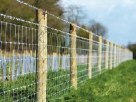 Tinklinės tvoros ir kuolai