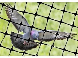 Tinklas Augalų Prilaikymui, Tinklas nuo paukščių