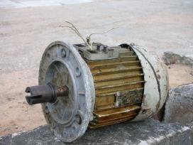 Elektrinis variklis