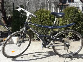 Vyriškas dviratis