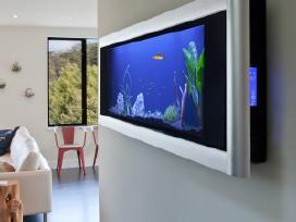 Puikaus grožio panoraminis akvariumas