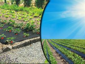 Agrotekstilė, Agroplėvelė, Tvirtinimo Smeigės