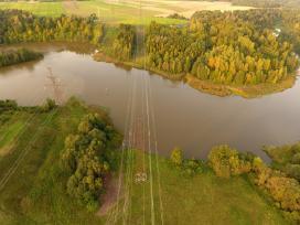 Pjovimo ir kiti miško darbai visoje Lietuvoje