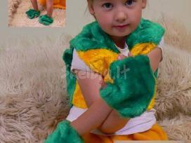 Vaikiski karnavaliniai kostiumai