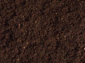 Sijotas geros kokybės juodžemis, kompostas darzui