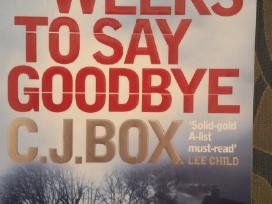 Three Weeks to Say Goodbye, C. J Box