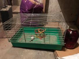 Narvelis triušiui/žiurkėnui/kiaulytei