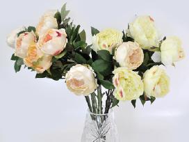 Akcija - Pavieniems gėlėms! - nuotraukos Nr. 8