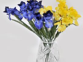 Akcija - Pavieniems gėlėms! - nuotraukos Nr. 10