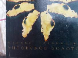 Senos knygos apie Gintarą