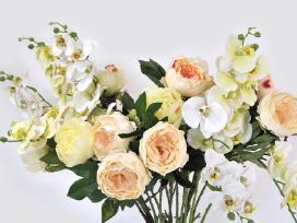 Nuolaidos Pavieniems gėlėms!