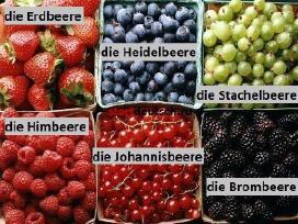 Auch im Sommer kann man Deutsch lernen!
