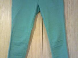Žalios-elektrinės spalvos Tom Taillor kapriai