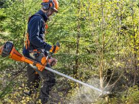 Miško ugdymas Skandinavijoje
