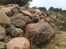 Ivairo dydzio lauko akmenys