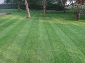 Žolės pjovim vejos pjovimas, aeravimas, priežiūra.